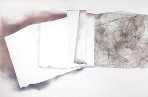 Gallery Reception, Torn and Folded: Work by Bill Flynn