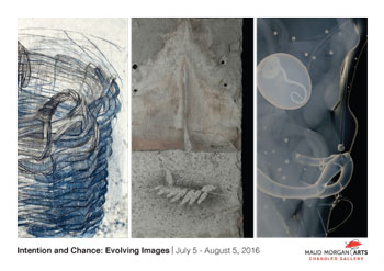 Intention and Chance: Evolving Images by Constance Jacobson, Eleanor Rubin, and Susan Schmidt